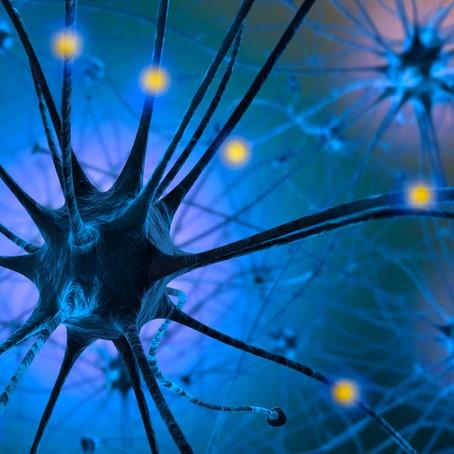 Serotonin: The Mood Boosting Neurotransmitter