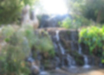 hagoshrim5.jpg