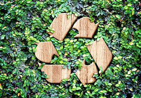 Eco concept _Wood texture Recycle icon o