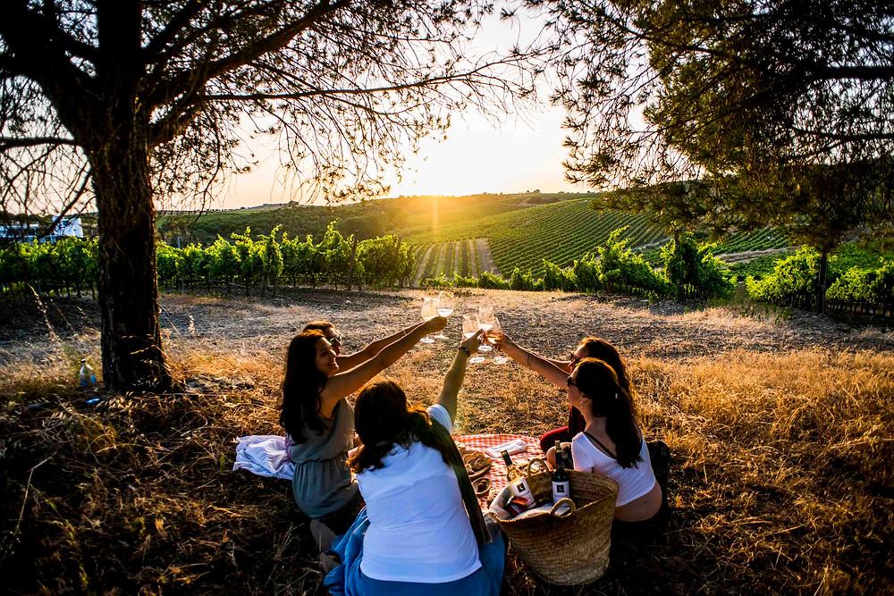 Portugal Alentejo Wine Region Quinta do Quetzal Roman Ruin Travel