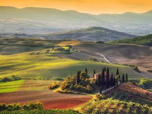 Italian Wine Treasures