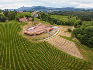 Basque Bubbly Wine?