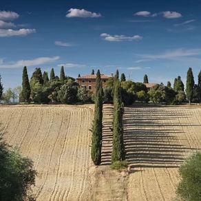 Italian Wine Treasures |