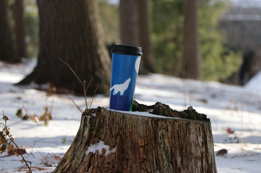 Sparty's Winter Mug Promotional Shoot