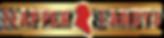 nappertandys-dublin-logo-01.png