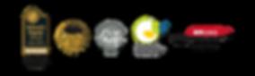 Profone logo2.png