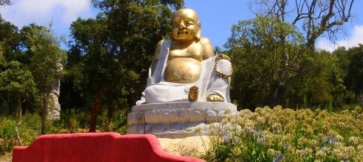 Buddha_Eden_land1.jpg