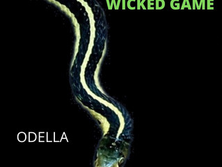 WICKED GAME (Cover)