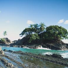 coconutgrovesmall.jpg