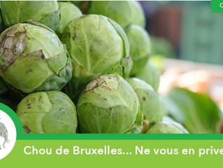 Chou de Bruxelles... Ne vous en privez pas !