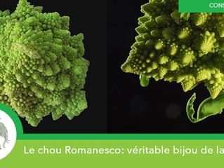 Le légume du mois de mai: le chou Romanesco