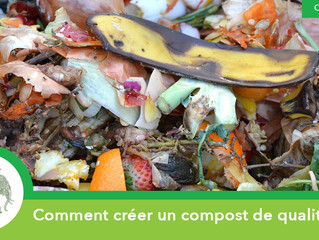 Comment créer un compost de qualité ?