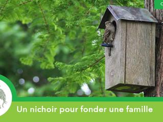 Un nichoir pour fonder une famille !