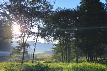 朝日(宿周辺から)