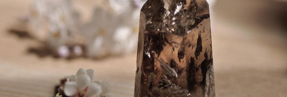Natural Smoky Quartz w. Lodolite + Gold Rutile