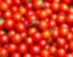 21889-1-tomates-cerises-bio-250-g-61785.