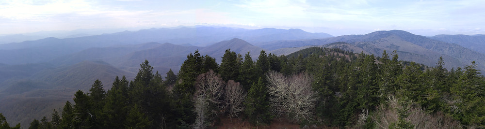 View from Mt Sterling Fire Tower