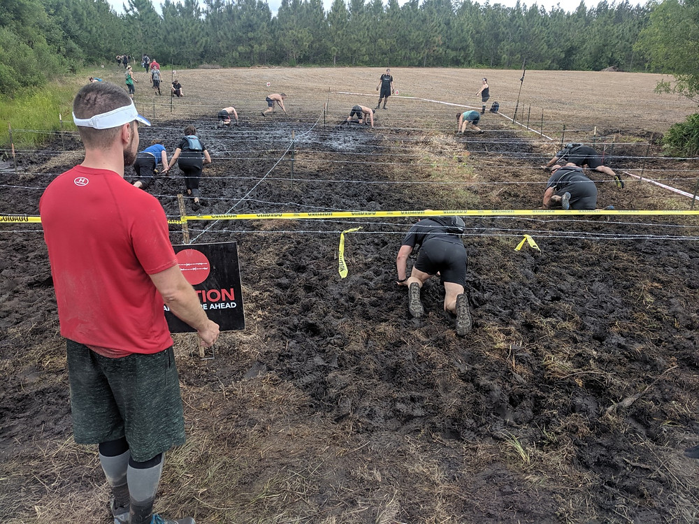 Stinky mud crawl