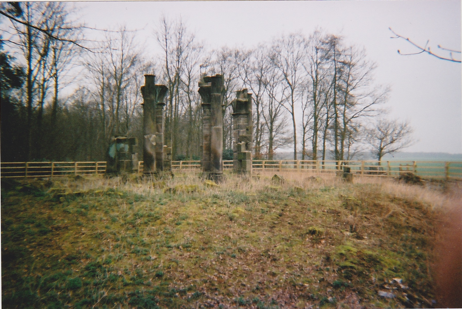 Gopsal Hall Temple Ruins