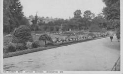 Flower Beds - Jephson Gardens
