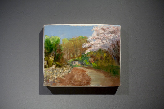 The road of the cherry blossoms