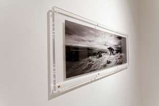 Installation view from 'Landshaft V',2010 2