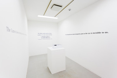 Speak the Unspeakable (installation view) 4