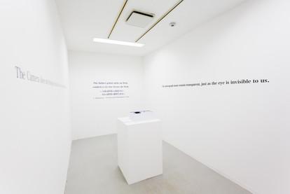 Speak the Unspeakable (installation view) 4