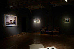 Two million years of solitude, Installation view