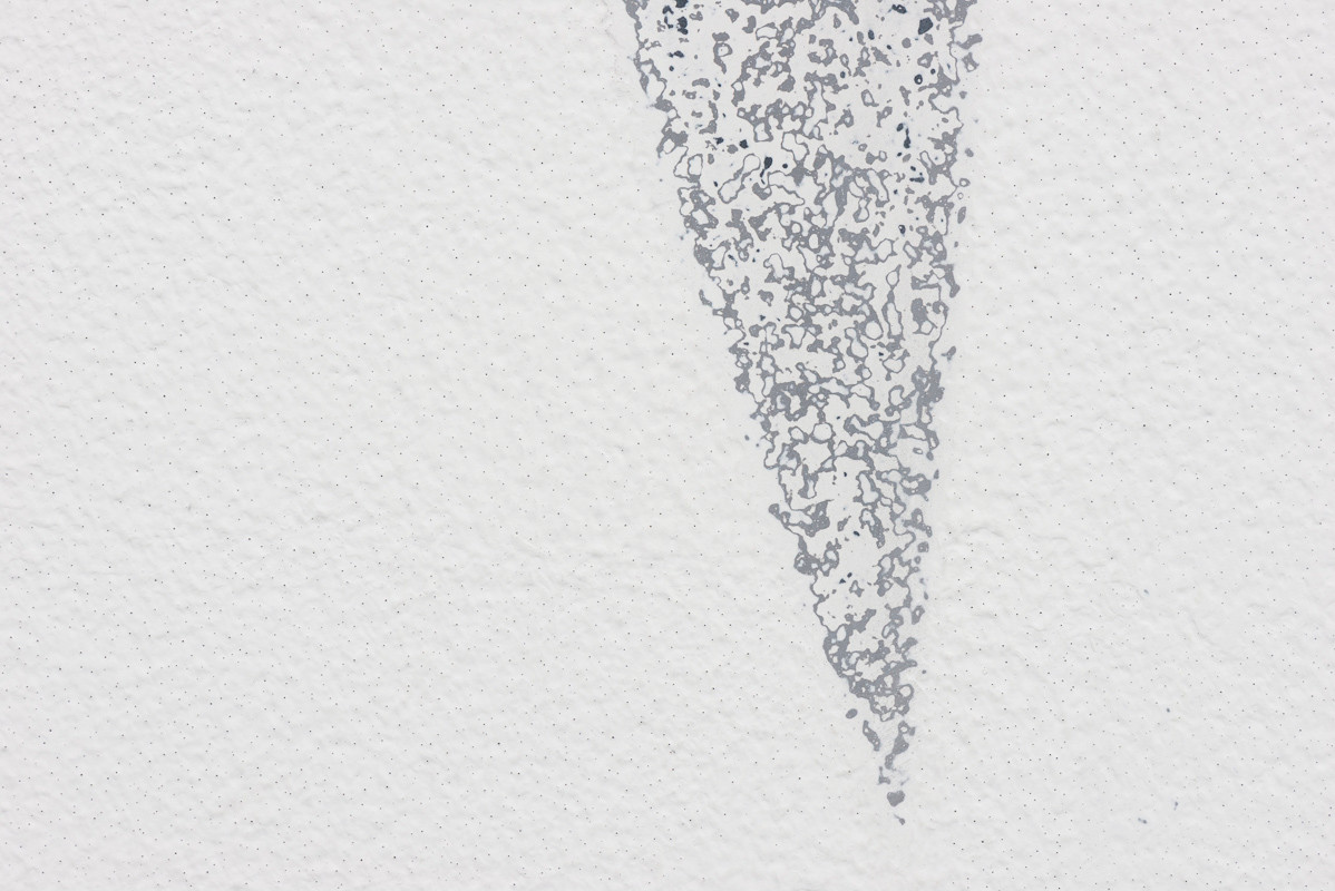 Daedalus falls(detail)