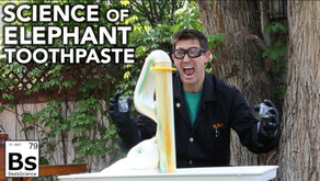 Elephant Toothpaste Demonstration - Science with Hydrogen Peroxide