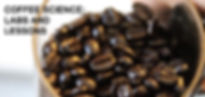 Coffee Beans by Beals Science
