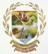 Town Council logo.jpg