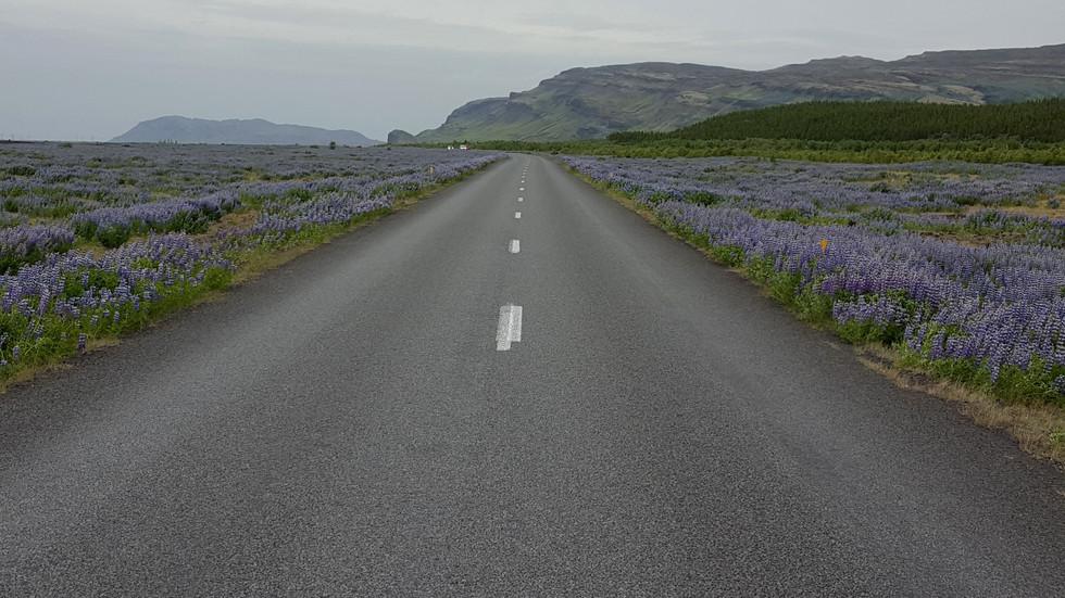 Iceland 2016: Days 1 & 2