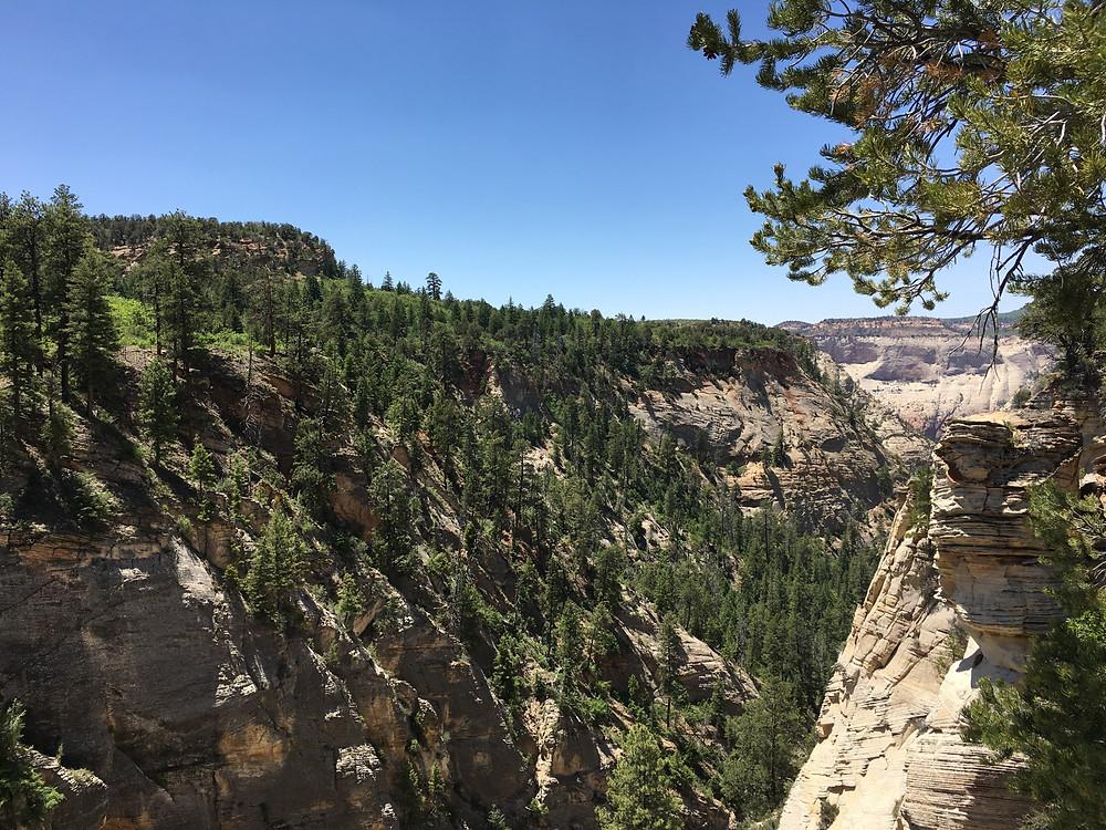 Zion East Rim Wilderness