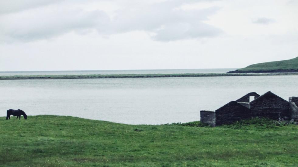 Iceland 2016: Snæfellsnes & Glymur: Day 7 & 8