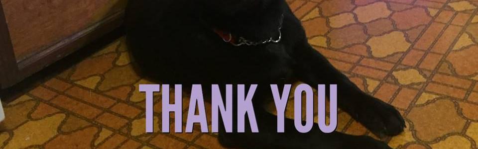 Thank you Maureen, Penny & Montana