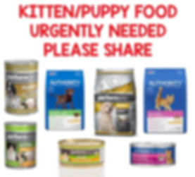 dog kitten food urgently needed poster.j