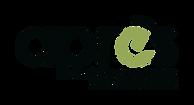 logo positif_ baseline.png