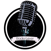 Radio_Lever-removebg-preview.png