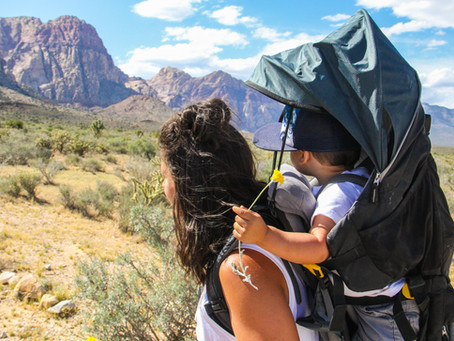 THE BEST HIKES IN RED ROCK CANYON FOR KIDS