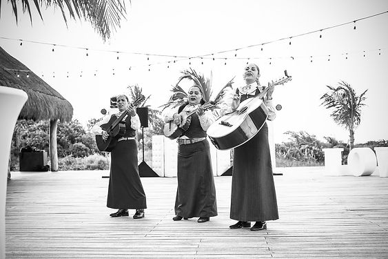 Musical trio for destination wedding