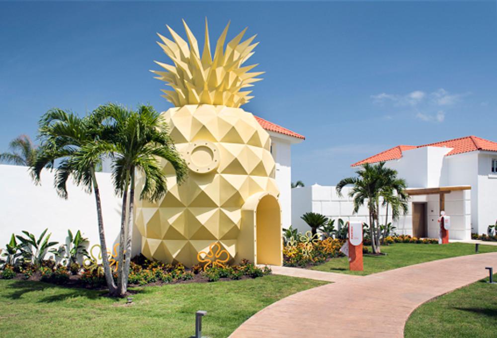 accom-Pineapple_2_NHPC (1)