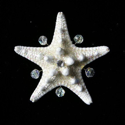 Crystal Starfish Boutonniere