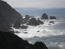 Near Bodega Head, Pacific Ocean Beach