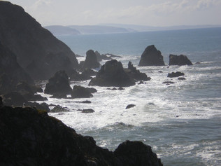 Near Bodega Head, Pacific Ocean Beach