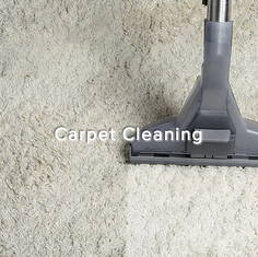 caret cleaning.png