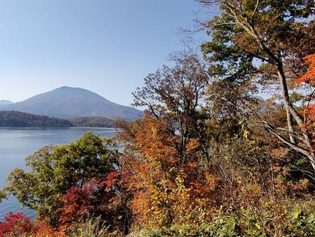 湖上からの紅葉狩り&ワイナリー巡り