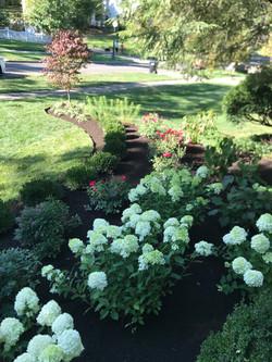 floral landscape design flowers
