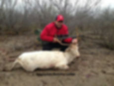 Tom Cassell harvested white stag, from a successful hunt